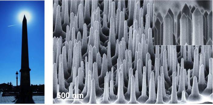 프랑스 파리에 위치한 오벨리스크 사진(왼쪽)과 나노구조물. KAIST 연구진이 이 오벨리스크형 나노 구조물을 이용해 초고속 양자광원을 개발했다.