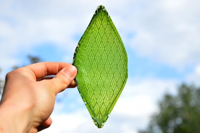 인공 나뭇잎 '광합성에 산소 생성까지'