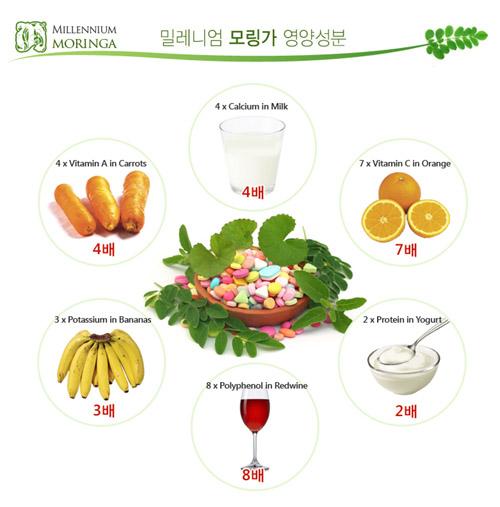 ▲ 모링가는 녹황색엽록소 작물 중에서 영양성분을 가장 다양하게 함유하고 있다.