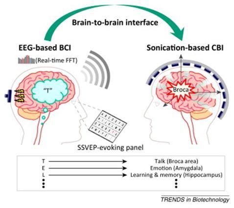 뇌-뇌 인터페이스 기술 (민병경, Műller, 2014, Trends in Biotechnology)