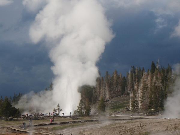 가이저와 캐니언등 볼거리가 많은 미국 옐로스톤 국립공원