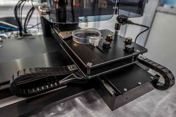 쥐 갑상선 '인쇄'한 바이오 3D프린터
