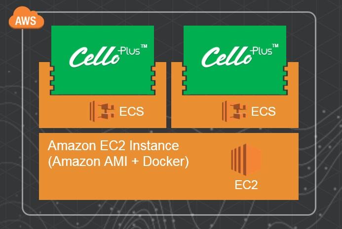 삼성SDS는 아마존 EC2 컨테이너 서비스를 통해 물류관리 솔루션 첼로를 2시간 이내로 빠르게 배포할 수 있었고 안정적인 네트워크 응답 속도를 구현했다.