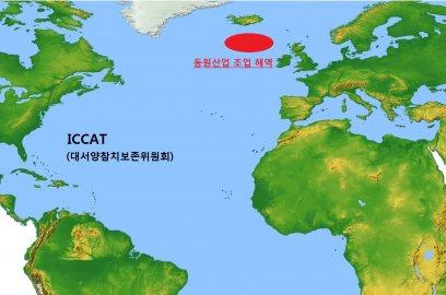 동원산업은 지난해 10월 3일 고위도(高緯度) 북대서양 참다랑어를 어획해 지난달 일본에 수출했다고 3일 밝혔다. 그래프=동원산업 제공