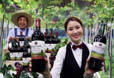 롯데주류가 국내 최장수 와인 브랜드 '마주앙'의 신제품 '마주앙 영천'과 '마주앙 영동'을 동시에 출시했다. 사진=롯데주류 제공