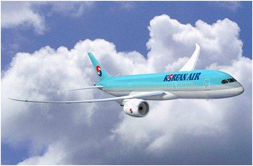 """大韩航空新机型""""梦想客机""""——""""B787-9""""(图片来源:韩国《电子新闻》)"""