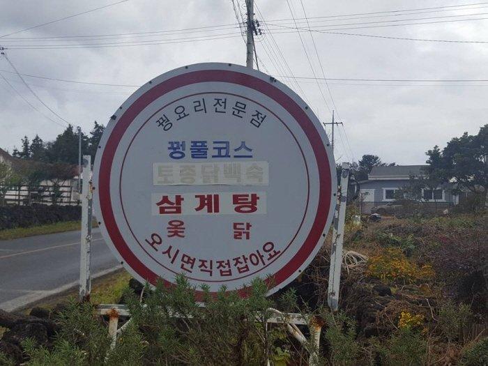 [허여사의 여행일기 제주도편] Day-6