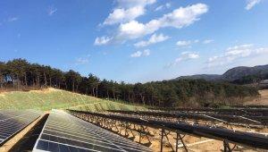 대건소프트, 대한민국 1호 태양광REC 연계형 EMS 구축