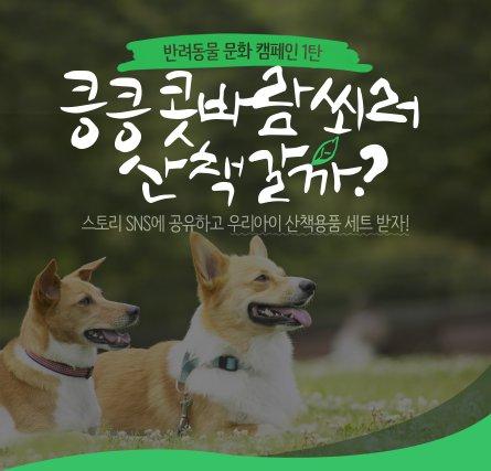 인터파크는 반려동물 전문몰 '인터파크 펫' 모바일 앱을 통해 반려동물 관련한 올바른 문화 정착을 위한 캠페인에 나섰다. 사진=인터파크 제공