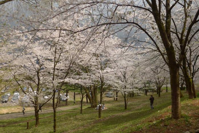 [허여사의 여행일기 일본편] Day-4