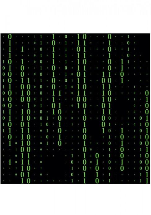 [채성수의 소프트웨어 논리] 소프트웨어의 개념