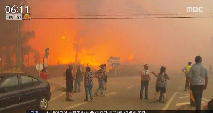 포르투갈 산불 '마른 뇌우 때문?' 하루사이 156건 산불..