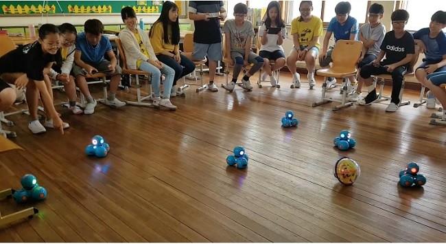 교실에서 학생들이 대시 로봇 축구를 진행하고 있다.