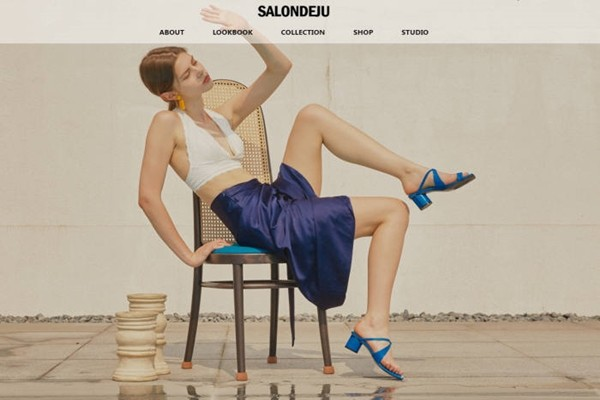 Homepage of SALONDEJU
