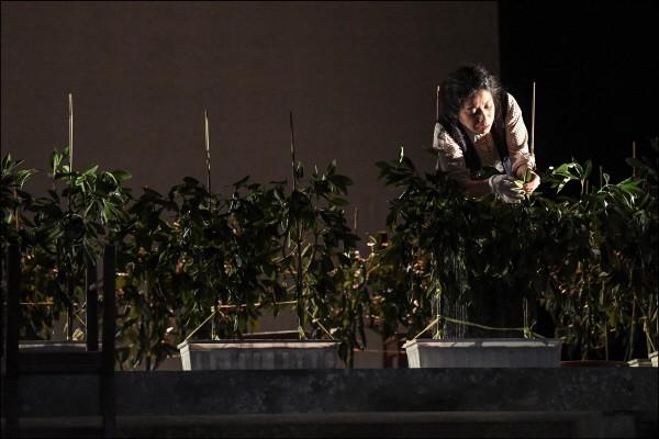 '옥상 밭 고추는 왜' 공연사진. 사진=세종문화회관 제공