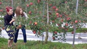 '도깨비불' 첫 촬영... 웹드라마로 만나는 도깨비 설화의 로맨스