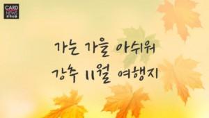 가는 가을 아쉬워~ 강秋 11월 여행지