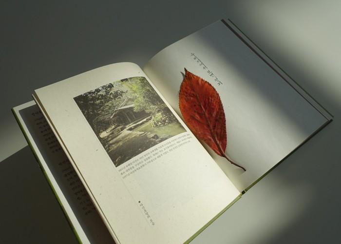 [안중찬의 書三讀] 정약용 '유배지에서 보낸 편지' 변방의 씨앗, 학문으로 꽃피다