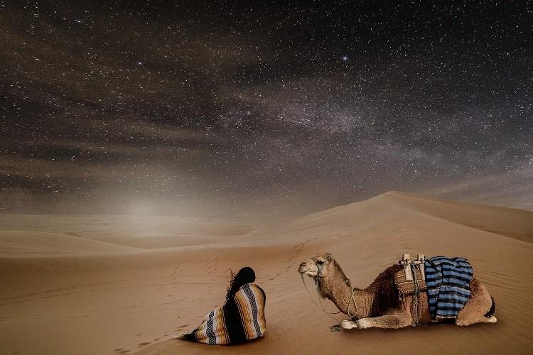[장윤정의 나에게로 떠나는 여행] 우리는 모두 노마드(Nomad)
