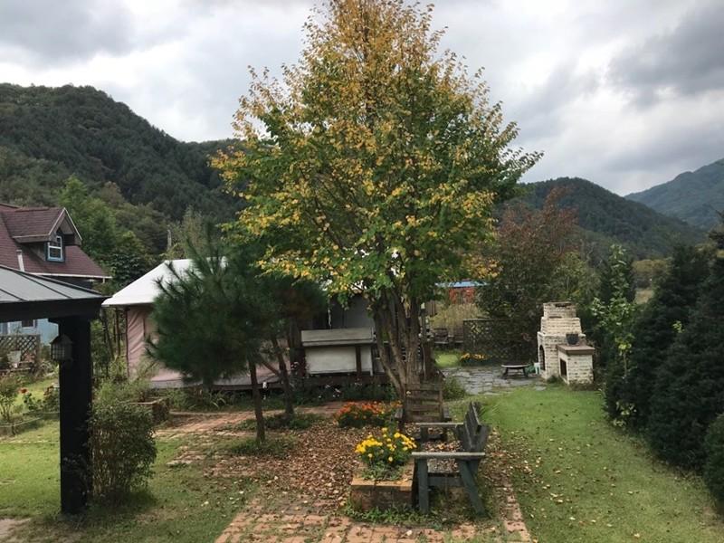 가을의 냄새를 물씬 풍기는 산속의 펜션 (사진 윤창기)