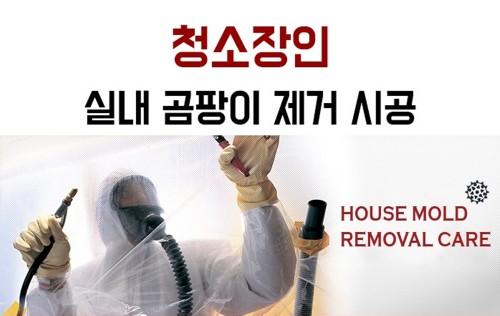 곰팡이제거 전문업체 '청소장인'는 벽곰팡이제거 및 벽지곰팡이제거를 위한 전문장비와 노하우를 보유하고 있는 곳으로 최근 급격한 온도 차이 생긴 곰팡이 문제 때문에 문의가 늘었다고 14일 밝혔다. 사진=청소장인 제공