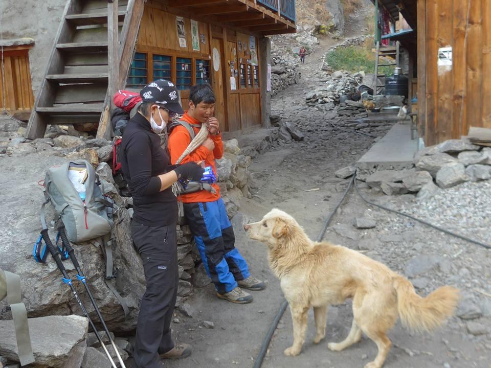 개와 함께 간식타임