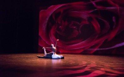 [ET-ENT 발레] 발레STP협동조합, 3월 발레갈라 'The Masterpiece'(3) SEO(서)발레단, 와이즈발레단