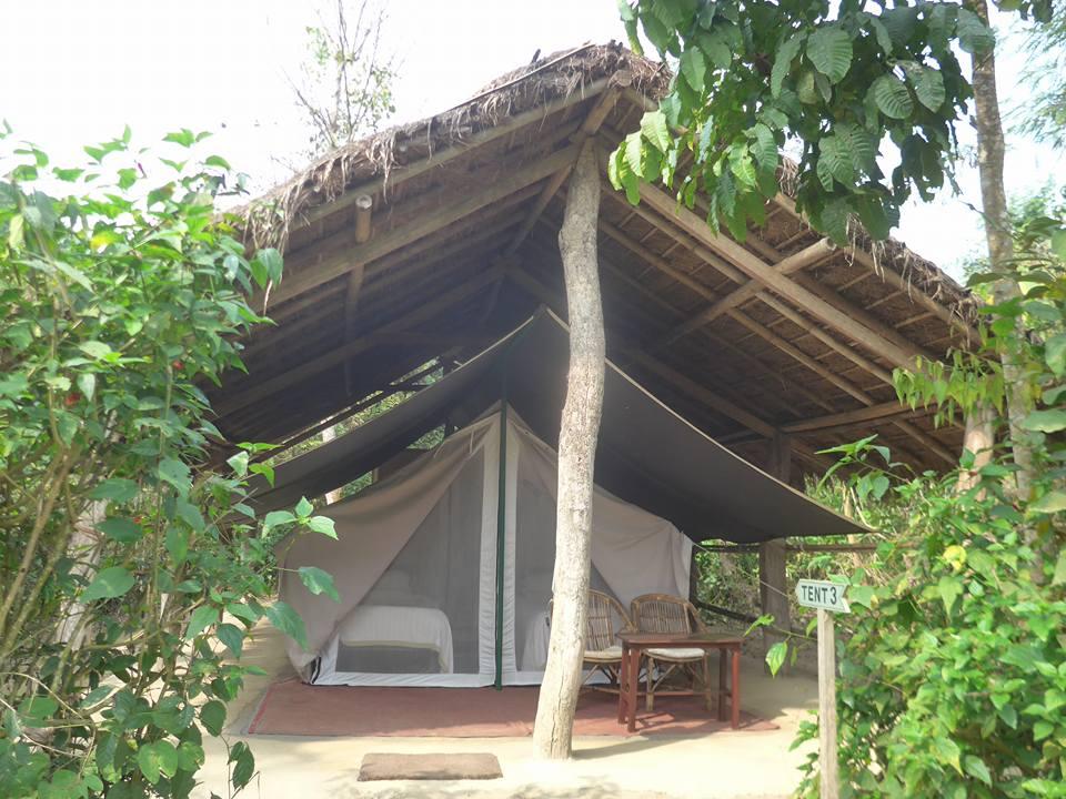 텐트 숙소