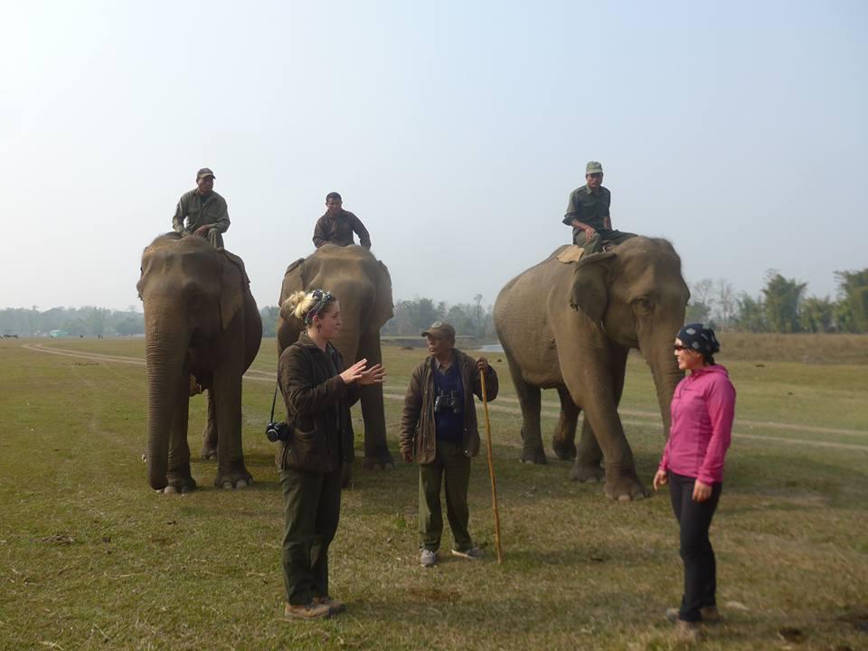 코끼리와 인사
