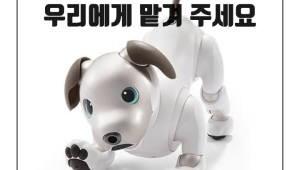 반려견 역할부터 재난현장 투입까지...'동물로봇' 전성시대