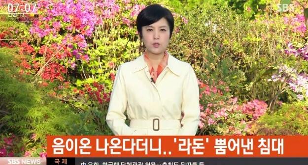 사진=SBS 뉴스 캡처