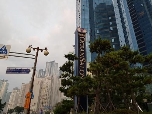 블록체인엑스포 참가업체 '마이스', 부산 스마트시티에 사용