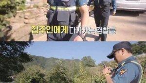 '시골경찰' 대마밭 100평 규모에 경악, 모두 폐기 처분