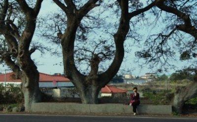 [ET-ENT 영화] 서울독립영화제2018(19) '어멍'(감독 고훈) 제주도에 대한 감독의 애정이 묻어나는 작품
