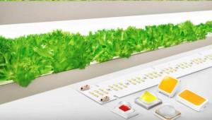 삼성전자, '풀 스펙트럼' 구현 식물 생장용 LED 출시
