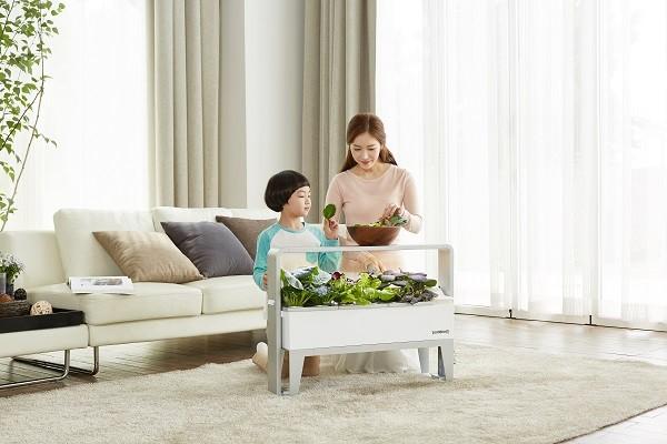 가정용 식물재배기 '우리텃밭 파쯔파쯔', 자연학습·올바른 식습관 형성에 도움