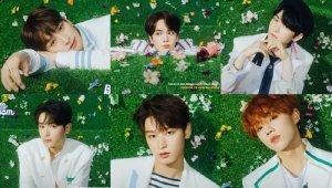 더보이즈, 새 싱글 'Bloom Bloom' 개별포토 공개…'청량감 더한 대세신예'