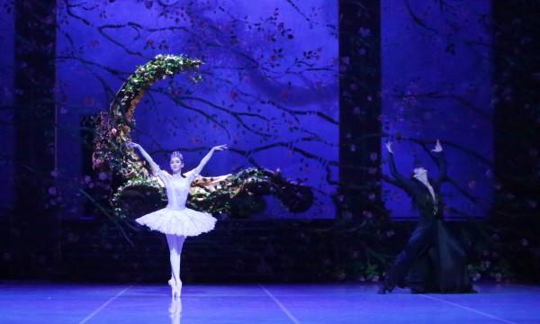 '잠자는 숲속의 미녀' 공연사진. 사진=국립발레단 제공
