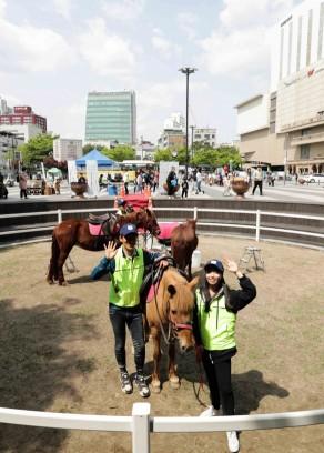 한국마사회, 도심승마체험은 성황 중