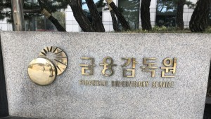 자본시장 '특사경' 도입...금감원, 자본시장 불공정거래 수사권 생긴다