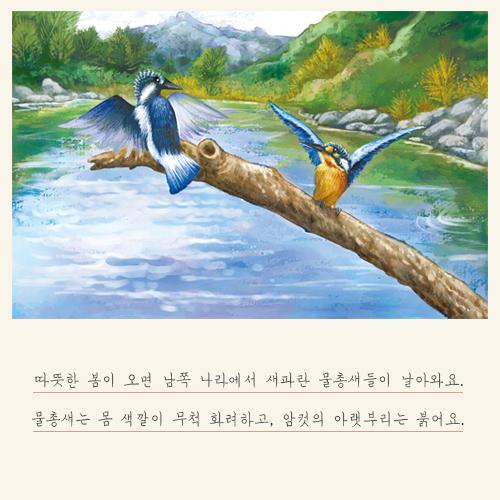 [카드뉴스] 물총새와 뿔호반새가 한 달만에 독립하는 이유는