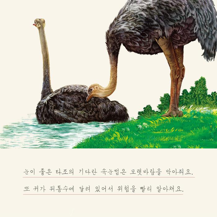 [당좋콘(3)]신비한 동물의 세계 : 이빨없는 타조와 야간비행 박쥐