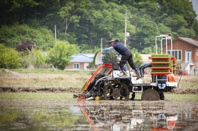 자율주행 이앙기에 탑승한 농부가 자율주행 상태에서 모판을 운반하고 있다 [사진=SK텔레콤]