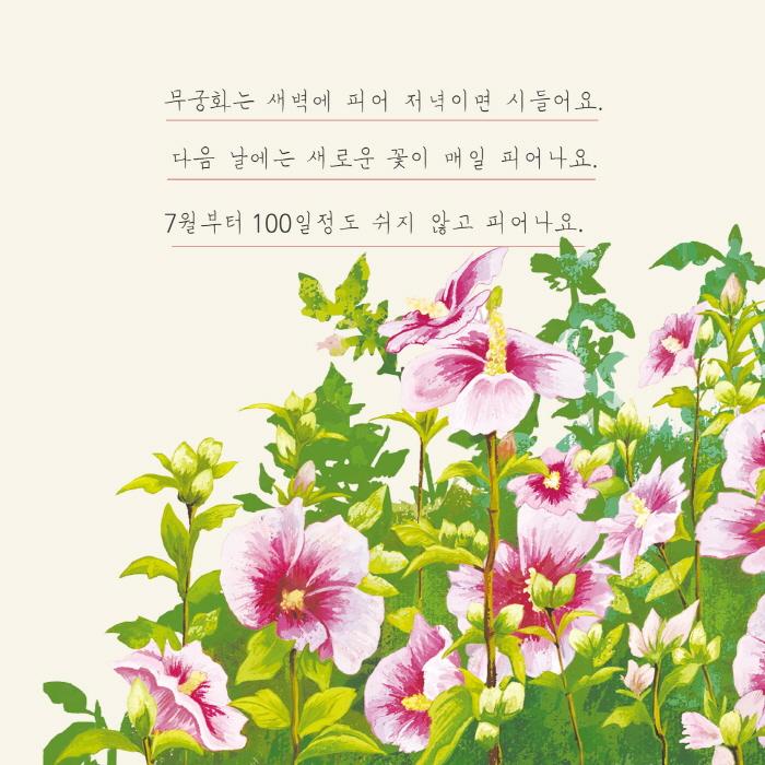 [카드뉴스] 무궁화와 벚꽃