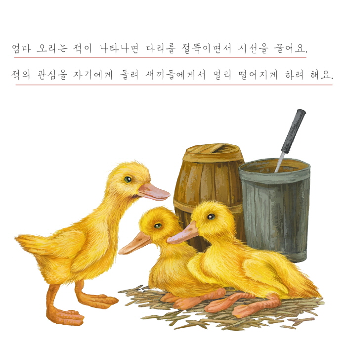 [카드뉴스] 오리