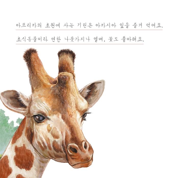 [카드뉴스] 기린