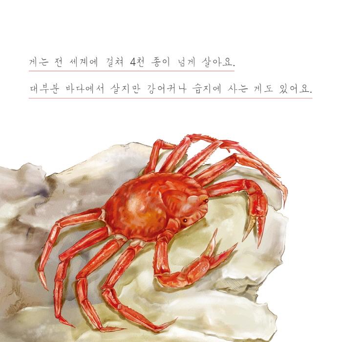 [카드뉴스] 게