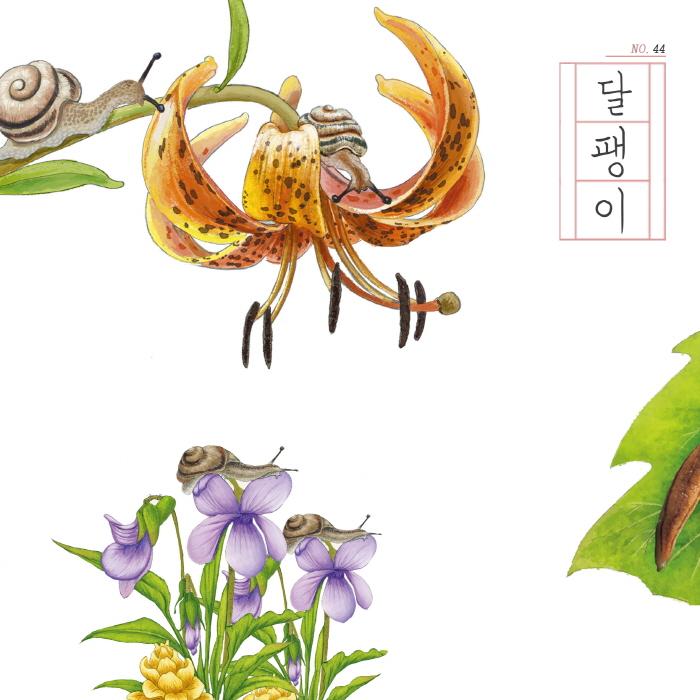 [카드뉴스] 달팽이