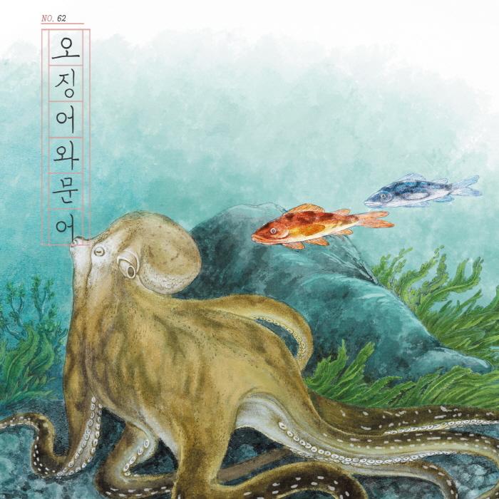 [카드뉴스] 오징어와 문어