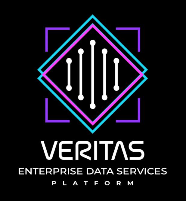 베리타스 엔터프라이즈 데이터 서비스 플랫폼, VM웨어 기반 하이브리드 IT 지원